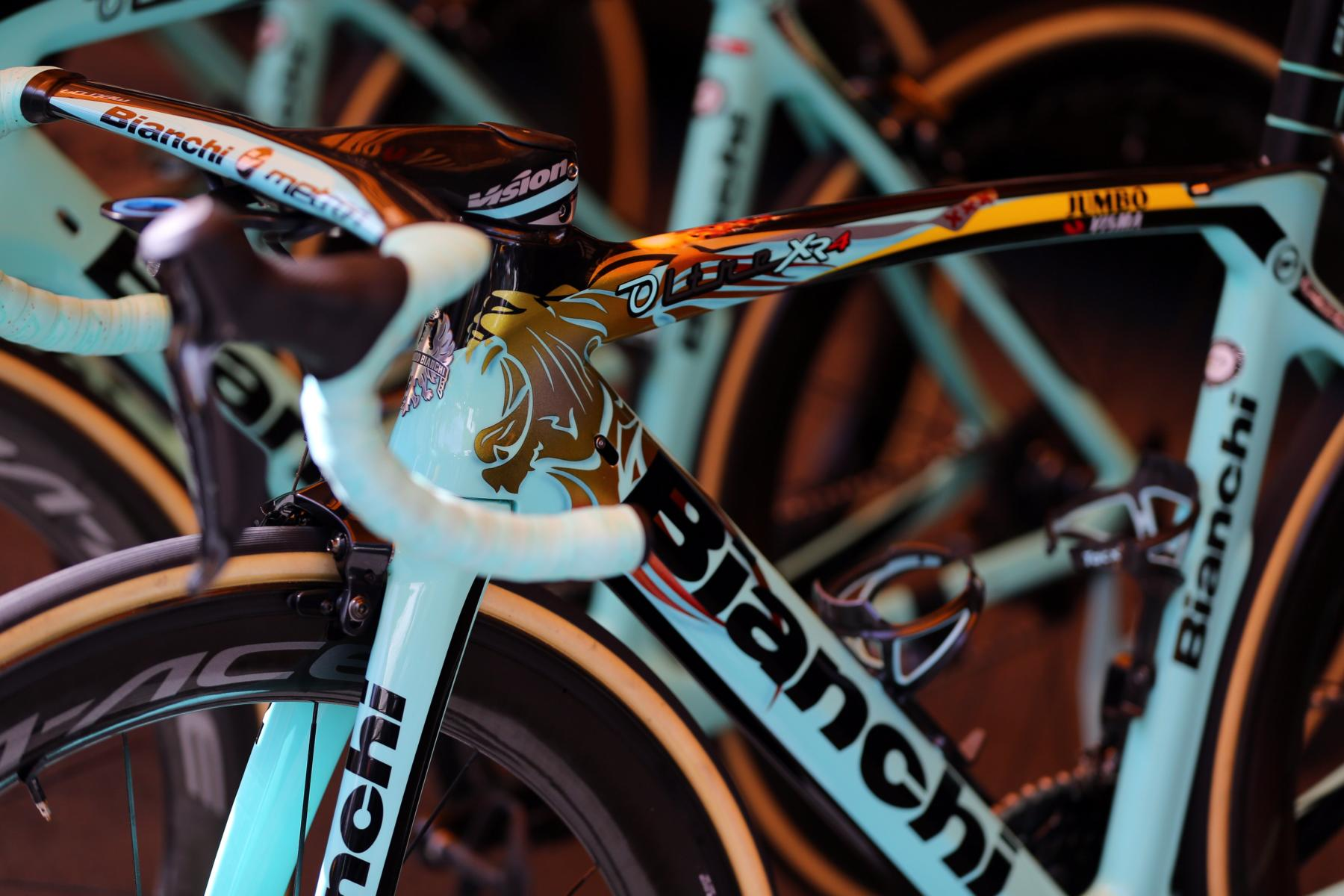 Professional and Teambikes